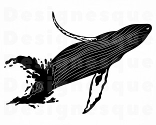 Humpback whale png Etsy