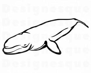 Beluga Whale 2 SVG Beluga Whale SVG Beluga Whale Clipart Etsy