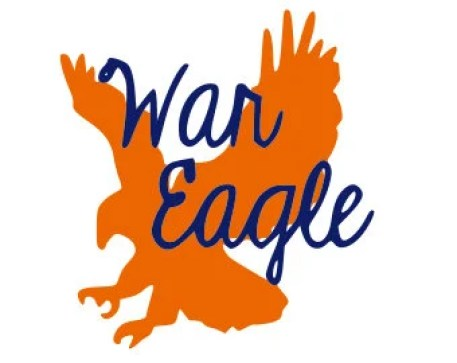 Image result for war eagle images
