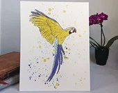 Printed with a watercolor-style parrot illustration, birds, art, wall decoration, decorative poster, watercolor animals