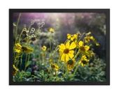 Framed Poster - Sunrise Wildflowers