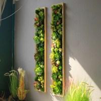 Künstliche lebende grüne Wand Indoor grüne Pflanzen ...