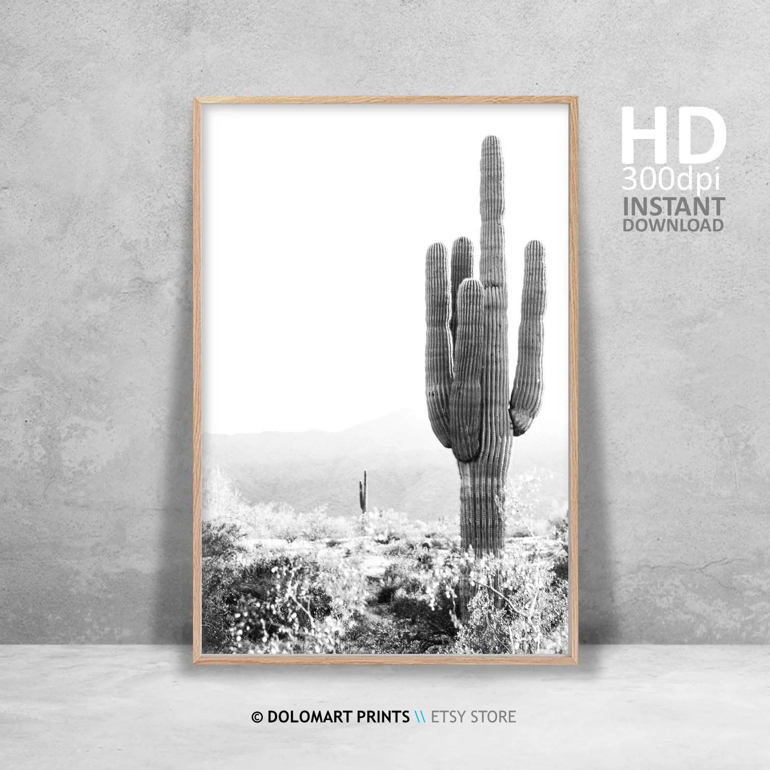 cactus print southwestern decor