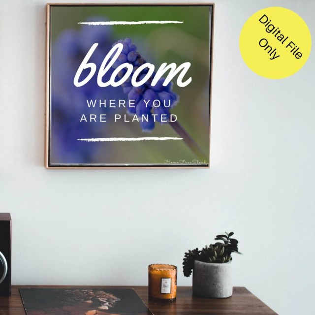 Bloom where you are planted- purple flower- Digital File to be printed- Online printing or print shop.