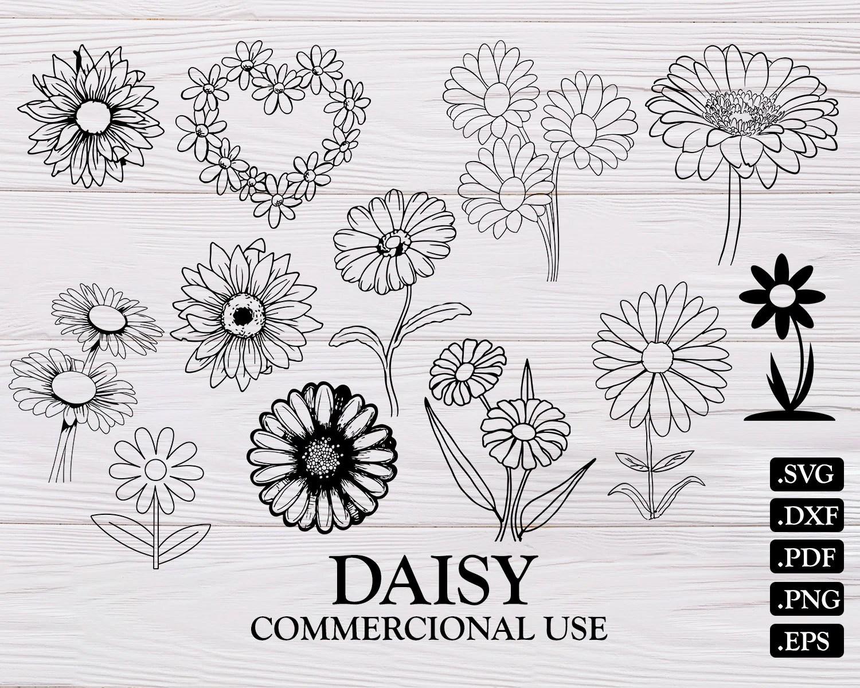 Daisy Flower Svg | Wiring Diagram Database