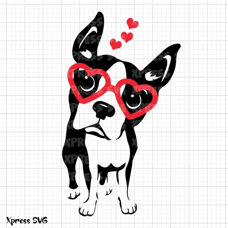 Download Boston Terrier SVG Dog Love Valentine SVG File Valentine's ...