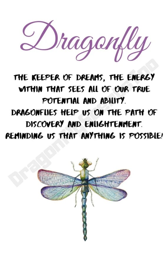 Download Download Loving Memory Dragonfly Svg Free for Cricut ...