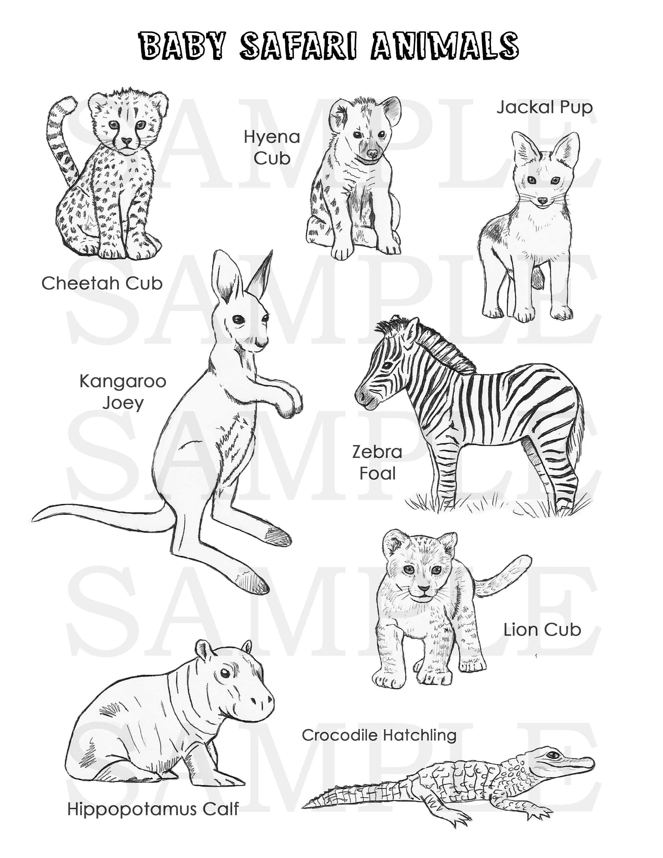 Safari Animal Coloring Pages : safari, animal, coloring, pages, Safari, Animals, Coloring