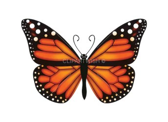 Butterfly PNG Monarch Butterfly Clipart Transparent Etsy