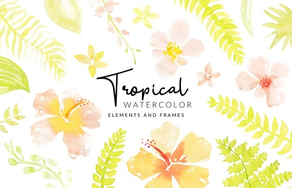 Soft Tropical Watercolor Clipart   Leafs and Flowers   Digital Download   Separate Floral PNG Elements   Clipart Frames   Peach Clipart