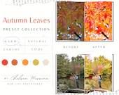 10 Lightroom Presets   Autumn Leaves   Travel Blogger   Instagram   Lifestyle   Photography