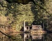 Landschaftsfoto, Herbst, quadratisches Bild, Fotografie Kunstdruck, Natur Foto, Wald Druck, Fotografie Landschaft, Fine Art Druck, Foto Baum