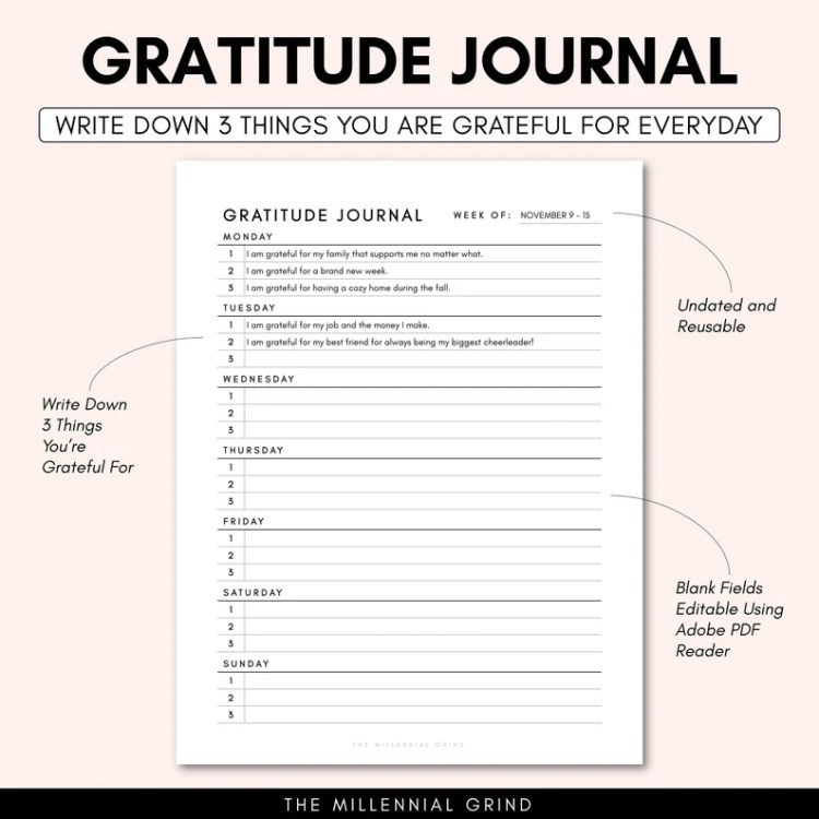 Gratitude Journal Printable Gratitude Journal PDF image 1