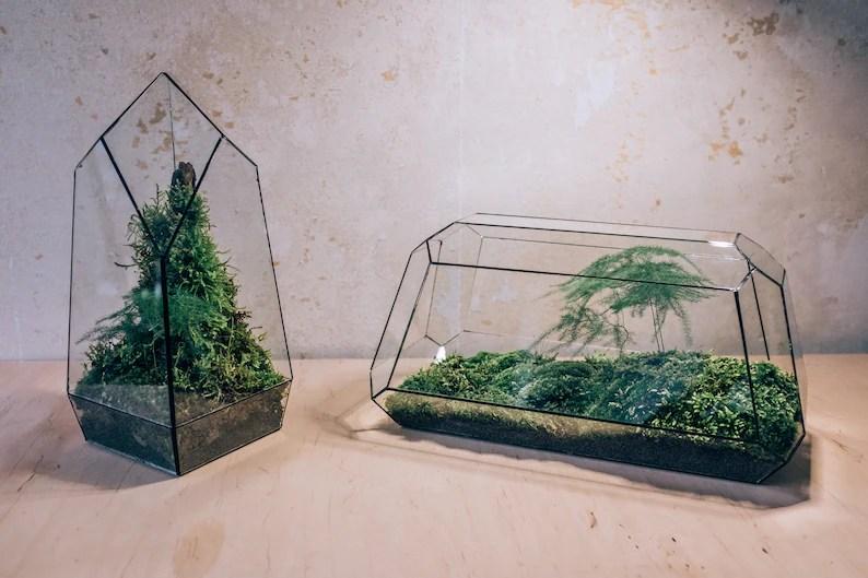 Carbon Large without Plants  Studio Pangea  Florarium image 6