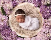 Purple Hydrangeas Newborn Digital Backdrops Lot (4)
