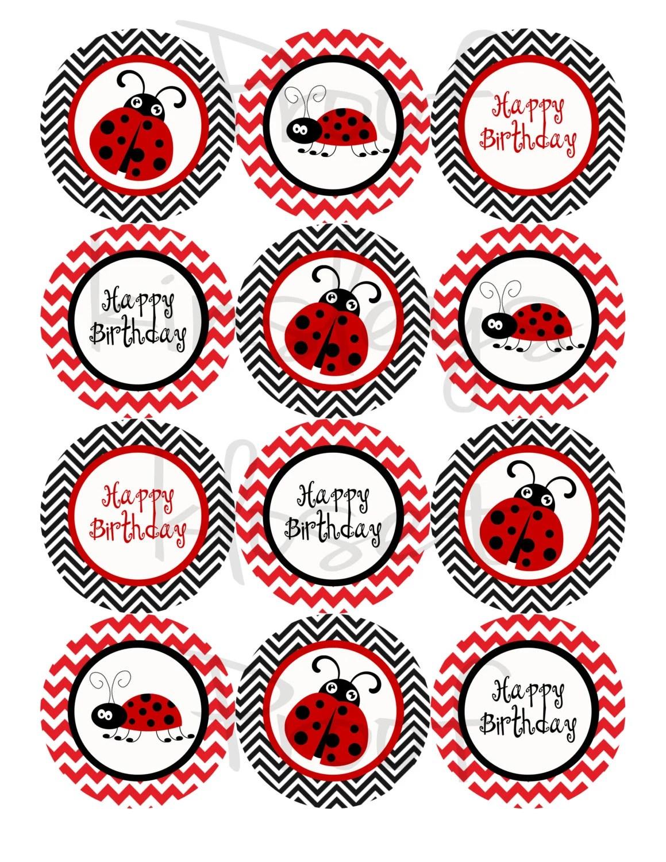 Rojo Y Negro Ladybug Partido Cupcake Toppers Lady Bug