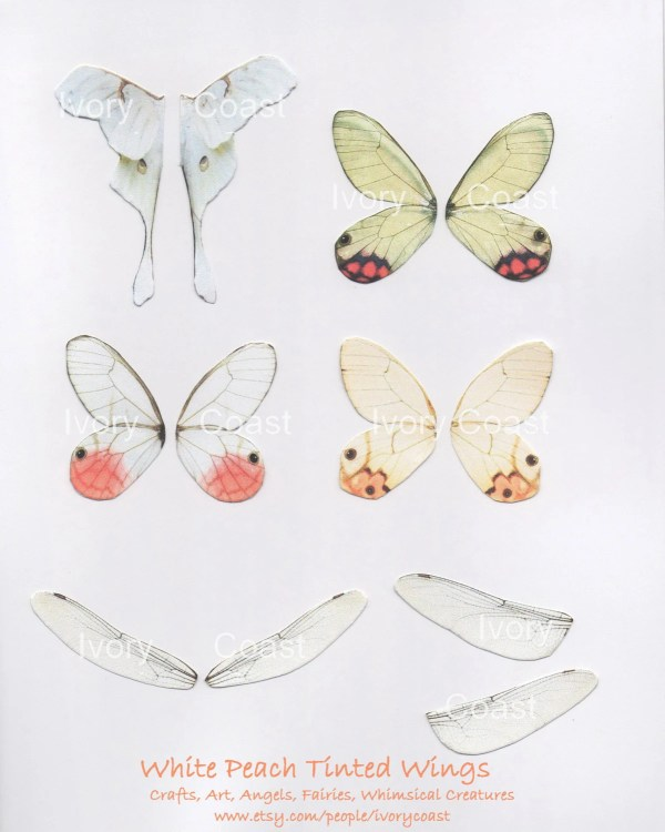 items similar white peach butterfly