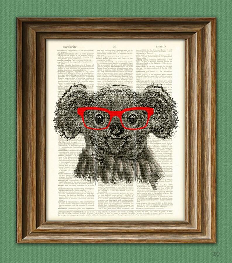 Koala Bear Smarty Pants with red glasses illustration   Etsy