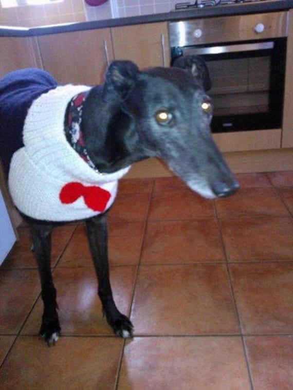 Greyhound Coat Pattern : greyhound, pattern, Greyhound, Tuxedo, Knitting, Pattern, Download