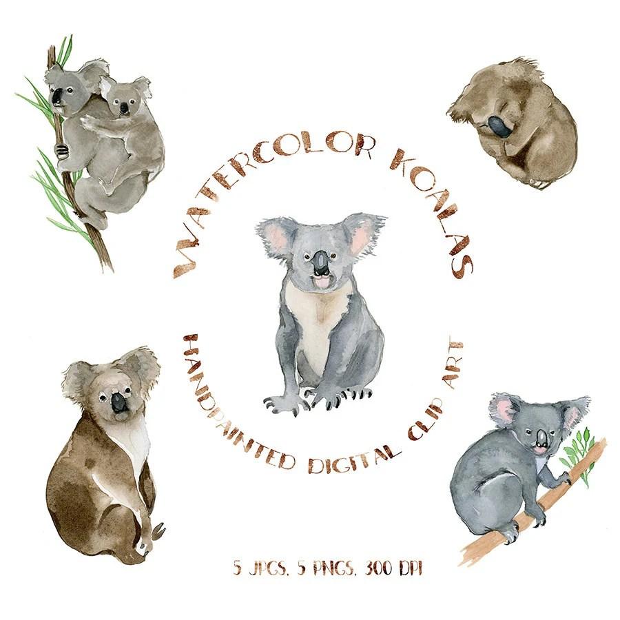 hight resolution of 50 watercolor koalas koala bear clipart