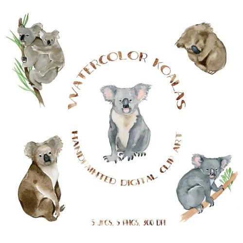 small resolution of 50 watercolor koalas koala bear clipart