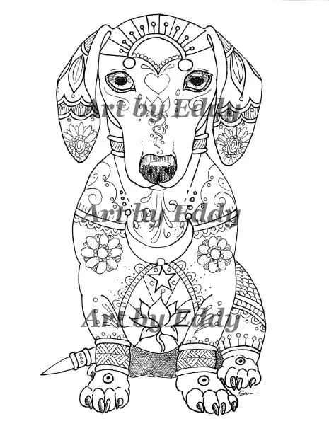 art of dachshund single coloring page  etsy