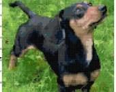 Cross stitch dachshund dog pdf pattern