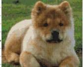 Cross stitch chow dog pdf pattern