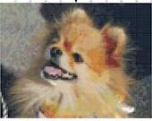 Cross stitch pomeranian dog pdf pattern