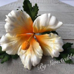Hibiscus Flower Cupcake Toppers Gardening Flower And Vegetables