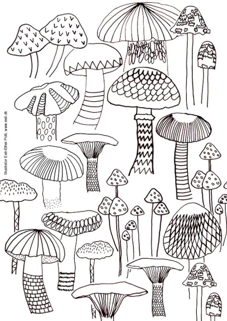 Mushroom coloring sheet A4 printable instant download