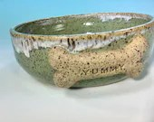 Dog Bowl in Turquoise + S...