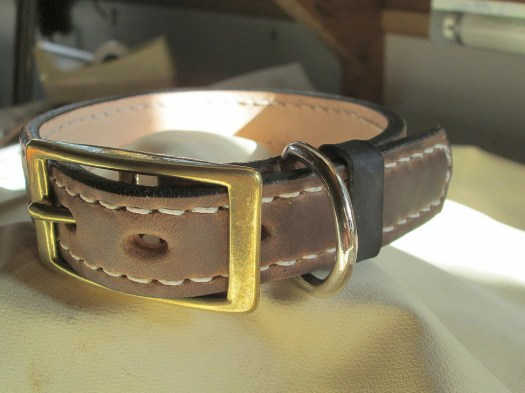 Hunting dog collar, mediu...