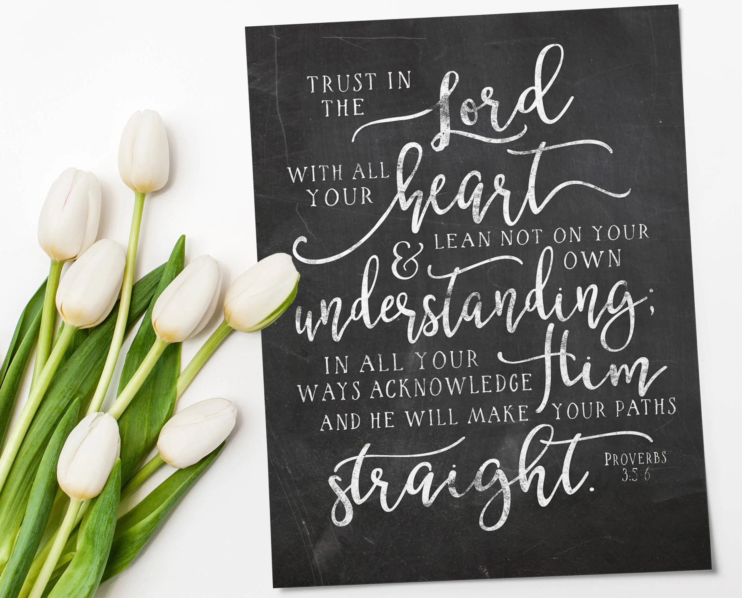Proverbs 3 5 Trust In The Lord Instant Download Bible