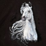 Hand Painted Black Shirt White Horse White Horse Sale Free Sh In Usa Only Original Art Work By Indigo Blu Size Medium 38 40