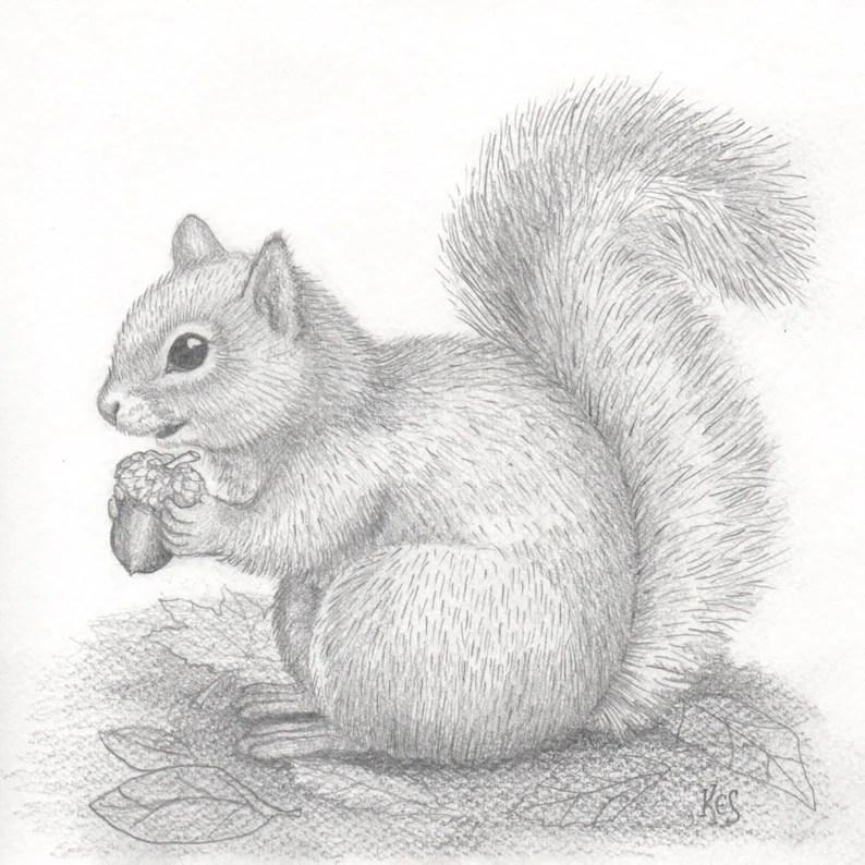 squirrel acorn art an