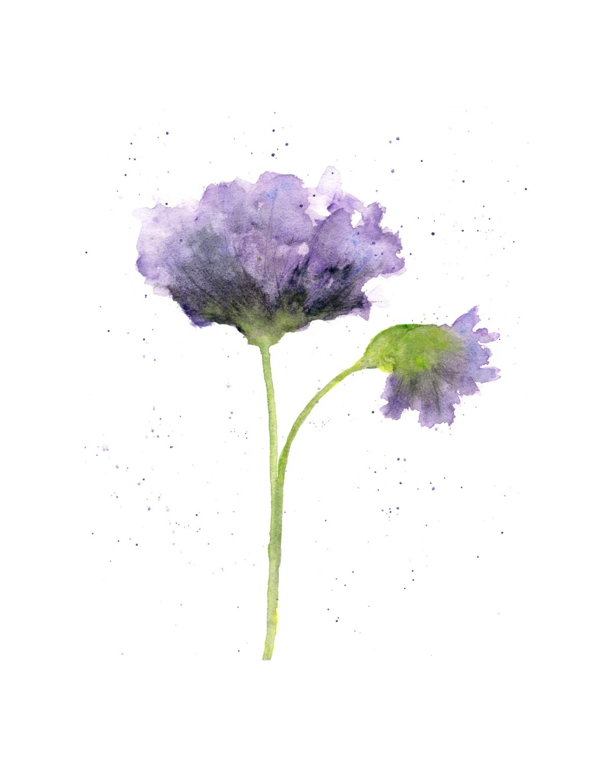 watercolor flower flower art
