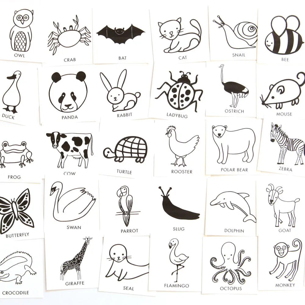 Animal Charades Game for Kids 48 hand-drawn animal