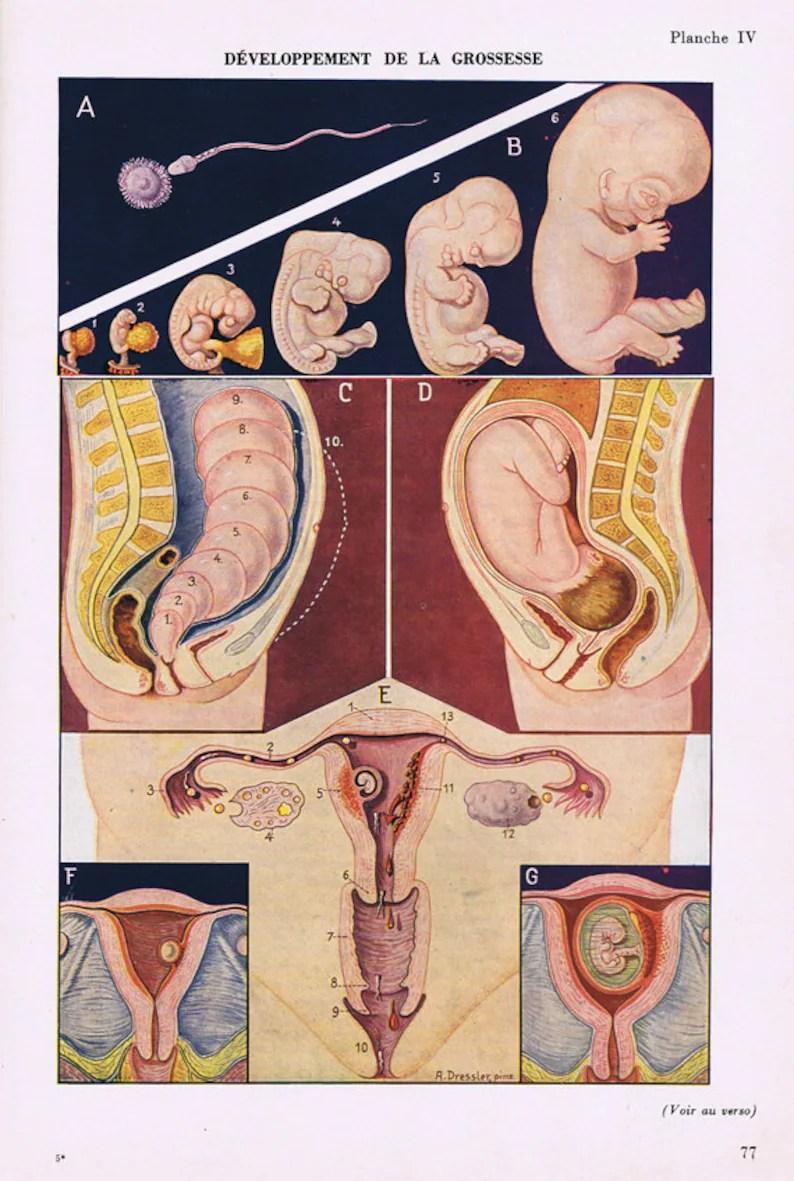 medium resolution of  printable pregnancy poster 1957 pregnant woman poster digital image 2
