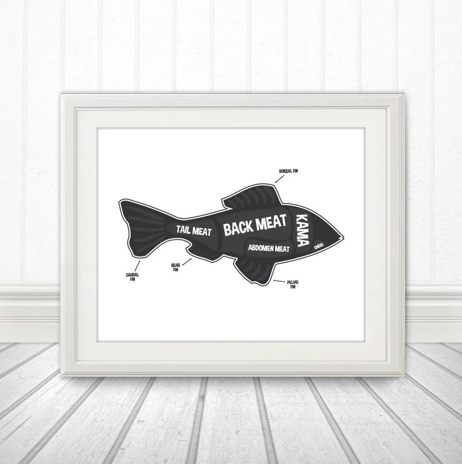 hight resolution of fish butcher diagram butcher chart fish fish diagram home decor kitchen sign kitchen print animal diagram kitchen art custom color