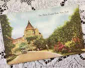 Vintage 1910s Color Photo Postcard Post Card The Drive CENTRAL PARK New York Beautiful Scene Roadster Car driving through The Park