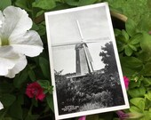 Vintage Antique 1920 Black & White Photo Postcard WINDMILL Golden Gate Park SAN FRANCISCO California U.S.A.