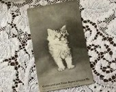 Antique 1910 Edwardian Black and White Art Postcard Post Card 1900s Come & Put Your Arms Around Me  - Cute Fluffy Adorable Kitten Cat