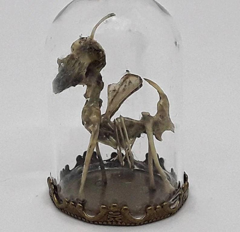real unicorn skeleton rouge