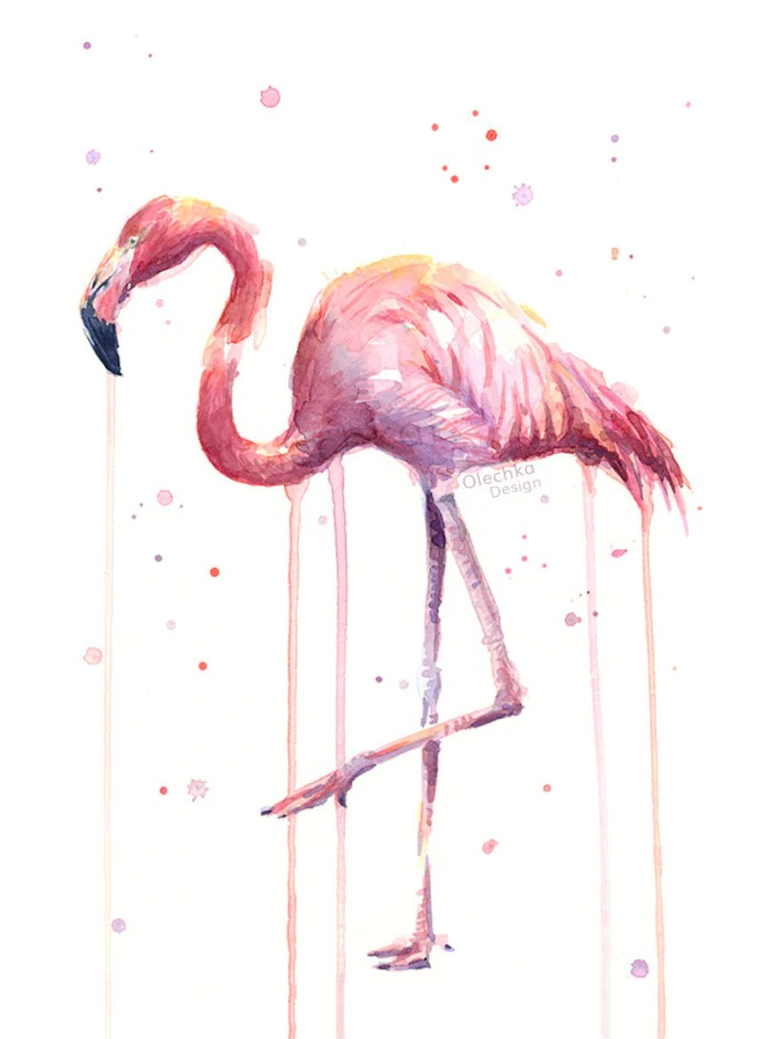 pink flamingo watercolor flamingo