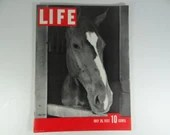 Vintage 1937 LIfe Magazine , July 26,  Polo Pony