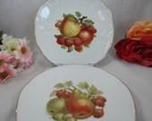 German Bareuther Still Life Fruit Plates Display Plates Set of 2