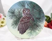 """1991 Edwin Knowles """"The  Saw-Whet Owl"""" from the Stately Owls Collection Collector Plate - Jim Beaudoin"""