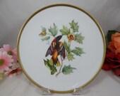 "1960s Hutschenreuther Audubon Salad Plate ""Baltimore Oriole"" Bird Absolutely Delightful"