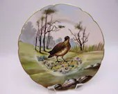 1882 Factory Decorated Charles Field Haviland Hand Painted Limoges France Game Bird Cabinet Plate - Delightful